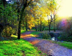 AvantGarden, un progetto di Land Art nel Parco della Vernavola