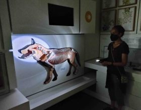 Kosmos concede il bis: sabato il Museo ripropone la visita al buio