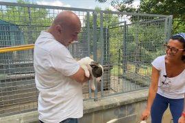 """Non abbandonarmi a Casa di Licia, la struttura per cani """"speciali"""" a Pecetto di Valenza"""