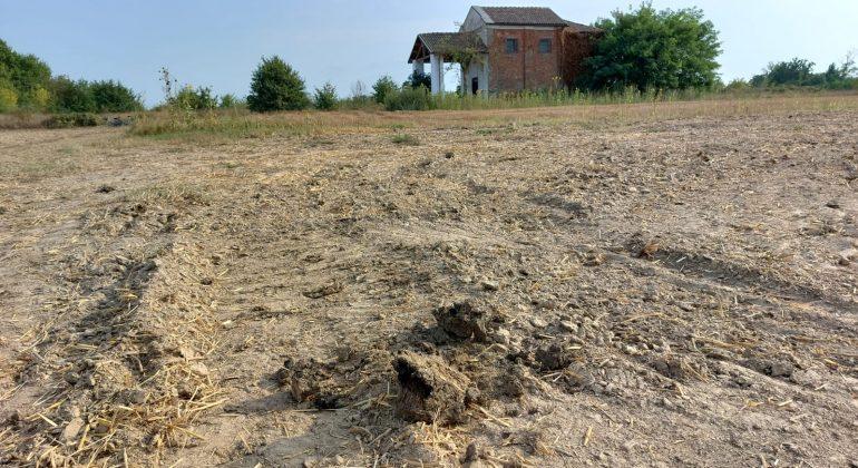 Miasmi a Lobbi e a Villa del Foro: il sindaco dispone limitazioni ai fertilizzanti