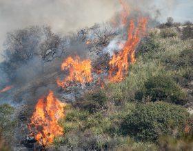 Emergenza incendi. Anche i volontari Aib della provincia di Alessandria in aiuto di Sicilia e Sardegna