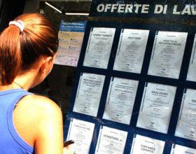 Le offerte di lavoro in provincia di Alessandria della settimana