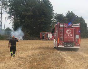 Incendio di sterpaglie a cantalupo: 3 mezzi dei Vigili del Fuoco sul posto