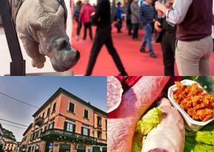 Cosa fare in provincia di Pavia. Gli eventi di sabato 25 settembre