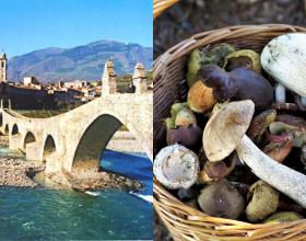 Bobbio: Festa dell'Uva e Sagra dei Funghi e del Tartufo