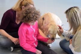 """Non abbandonarmi: quando i cani diventano anche """"dottori"""" per i più piccoli"""