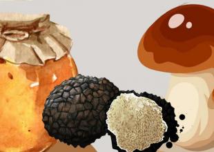 La Grande Sagra a Zavattarello: miele, tartufi e funghi
