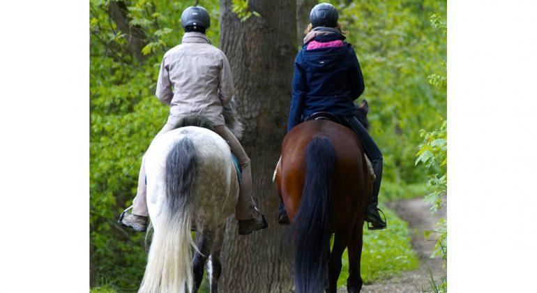 Da Monteacuto a Varzi per una gita a cavallo
