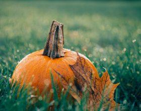 Oggi inizia ottobre: le cose da sapere su questo mese