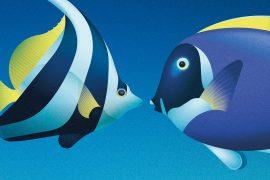 IllusiOcean: la mostra a Milano per perdersi nei meandri del mare