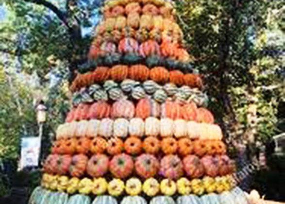 """Domenica 17 ottobre """"Zuccolandia"""" a Mombello Monferrato"""