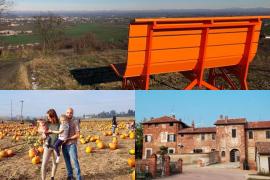 Cosa fare in provincia di Pavia. Gli eventi di domenica 24 ottobre