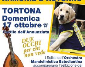 """Domenica 17 ottobre a Tortona """"Armonie d'Autunno – Due occhi per chi non vede"""""""