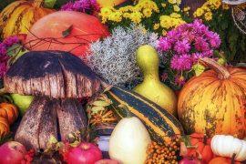 Domenica 7 novembre Autunno fruttuoso a Cartosio