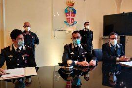 Carabinieri e Forestale scoprono piantagione di marijuana a Brignano Frascata