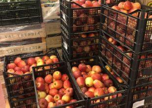 Mense scuole Alessandria: dalla prossima settimana nuovo magazzino in città per prodotti secchi e frutta