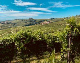 Autunno in Piemonte: i cinque luoghi da scoprire in questo periodo